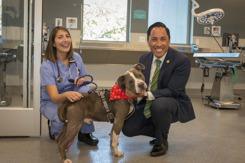 First Center for Shelter Medicine Opens | San Diego Humane