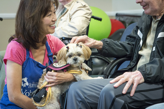 A women presents a kind little white dog to a man in a car facility. The dog is a canine ambassador animal volunteer for the San Diego Humane Society.