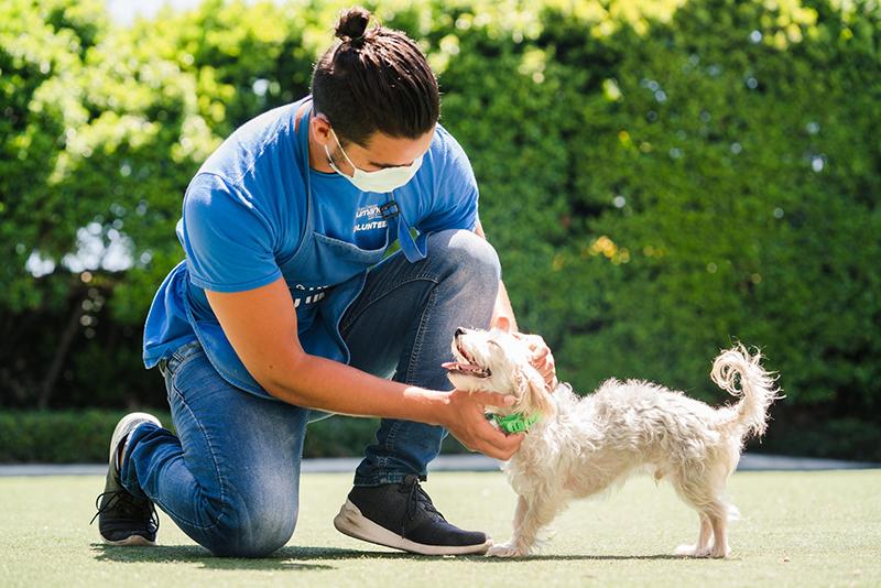 San Diego Campus San Diego Humane Society